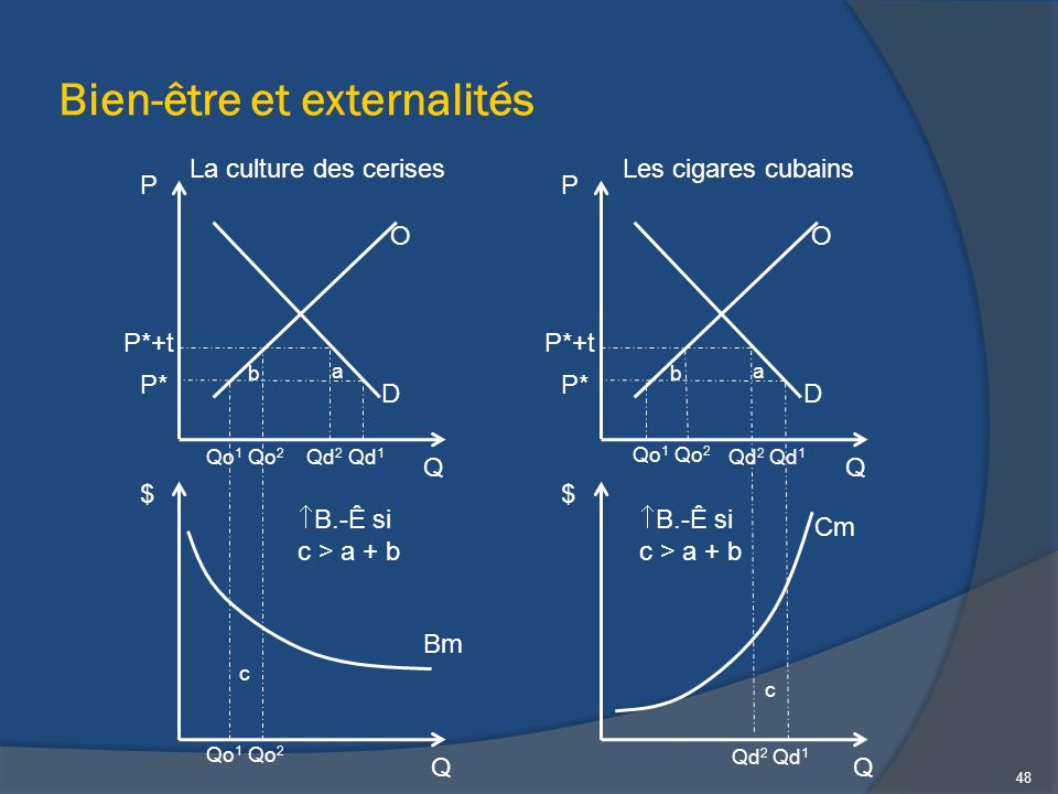 Bien-être et externalités