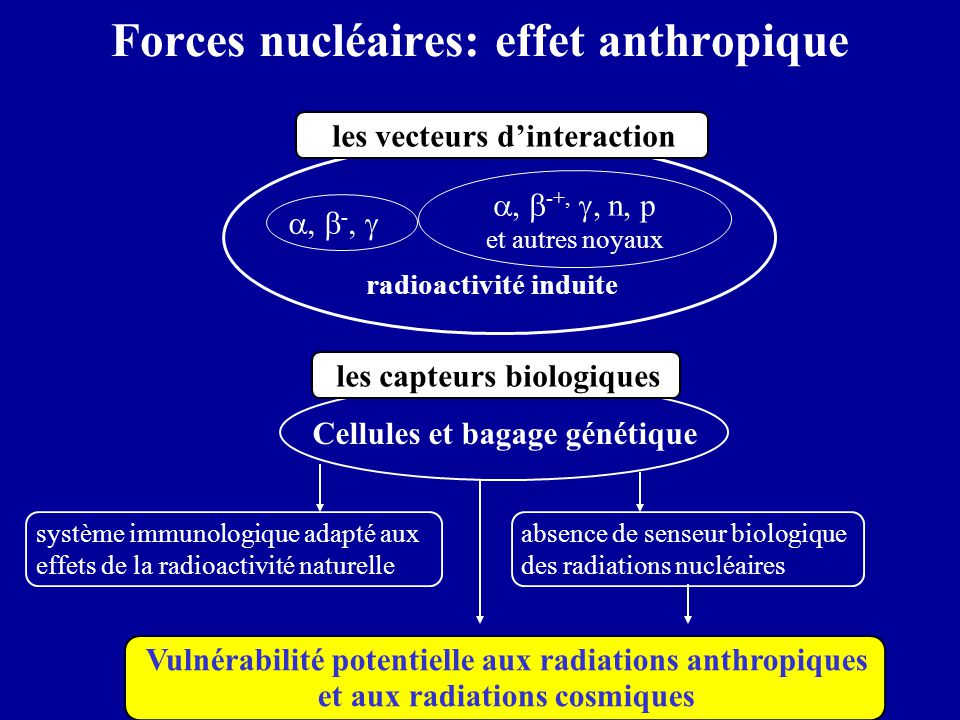 Forces nucléaires: effet anthropique