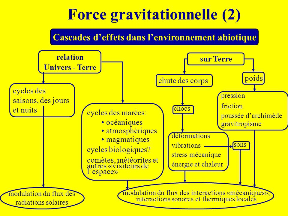 Force gravitationnelle (2)