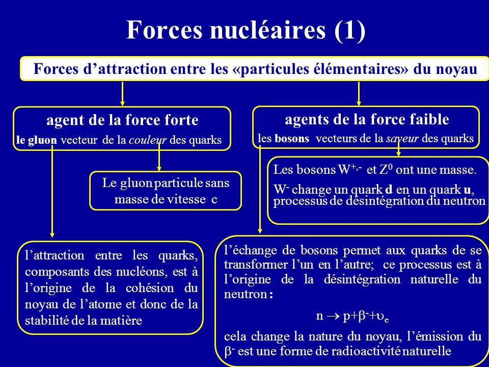 Forces nucléaires (1) Forces d'attraction entre les «particules élémentaires» du noyau. agent de la force forte.