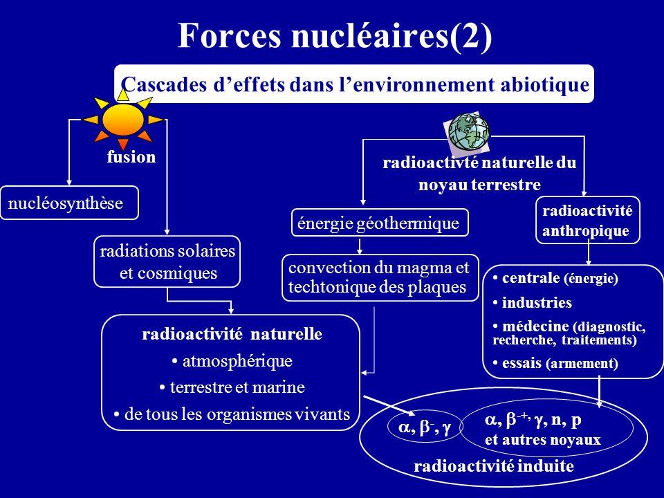 radioactivté naturelle du noyau terrestre radioactivité naturelle
