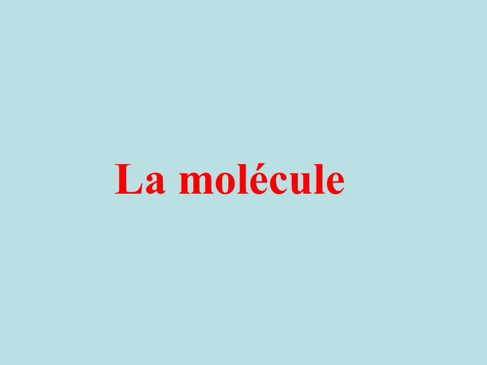 La molécule