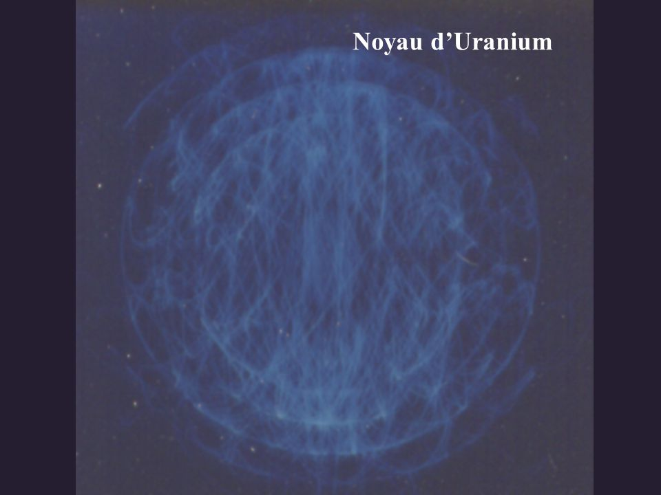 Noyau d'Uranium