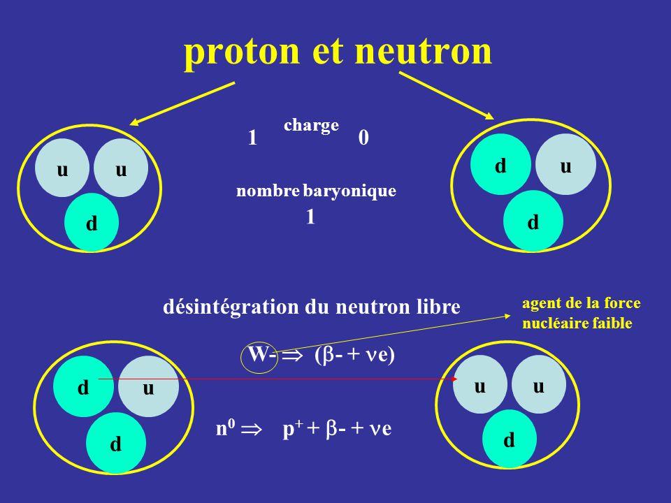 proton et neutron 1 d u u d 1 désintégration du neutron libre