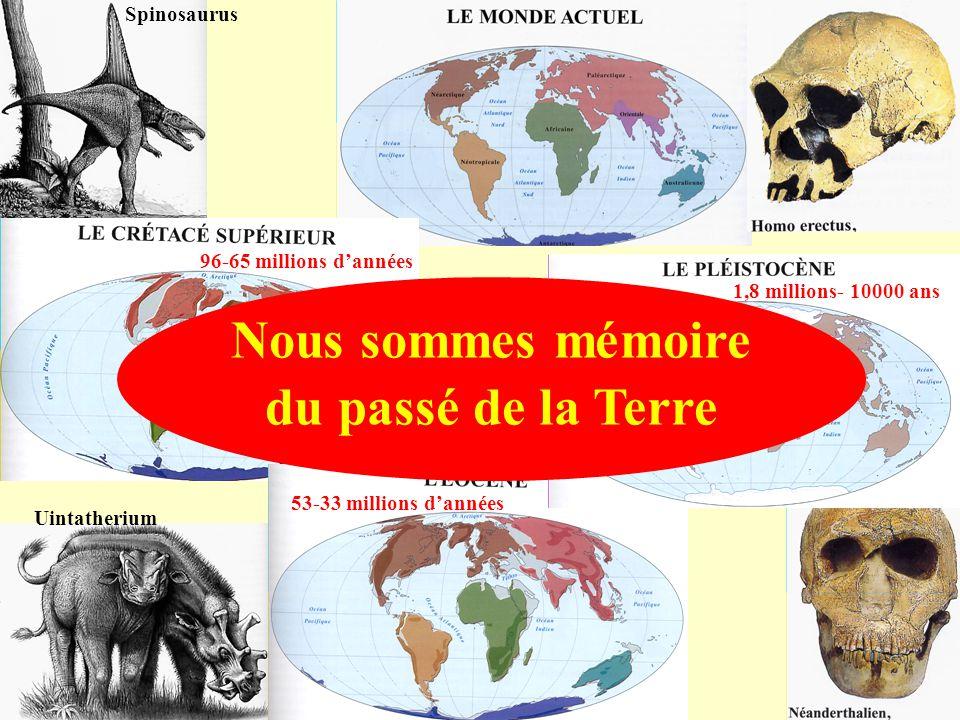 Nous sommes mémoire du passé de la Terre