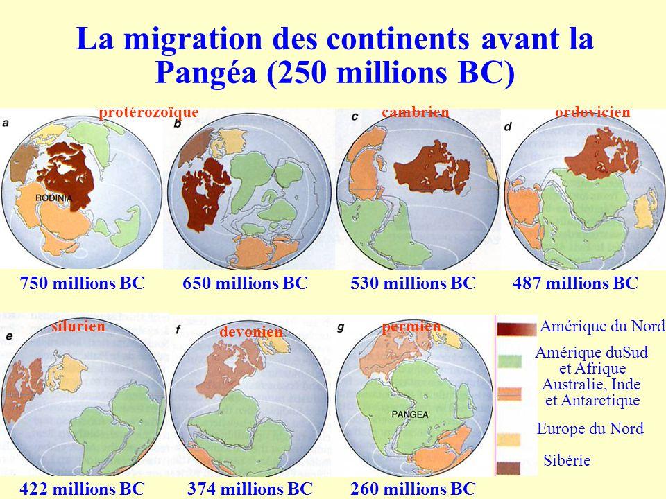 La migration des continents avant la Pangéa (250 millions BC)