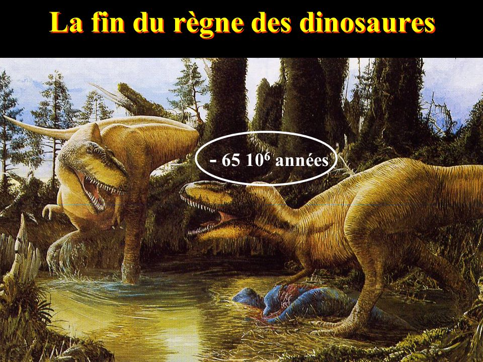 La fin du règne des dinosaures