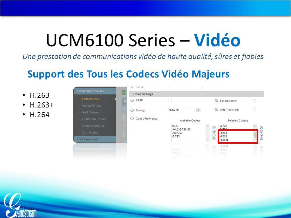 Support des Tous les Codecs Vidéo Majeurs