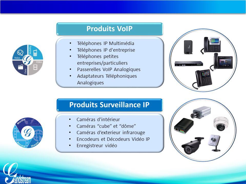 Produits Surveillance IP