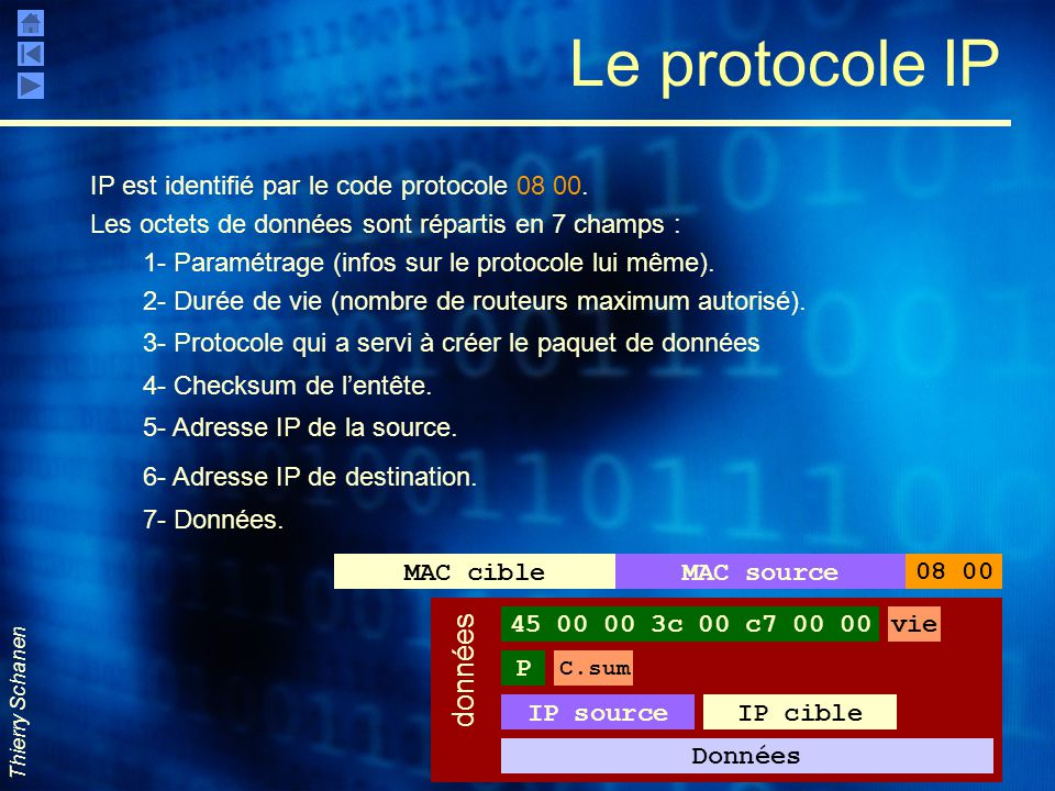Le protocole IP données IP est identifié par le code protocole 08 00.
