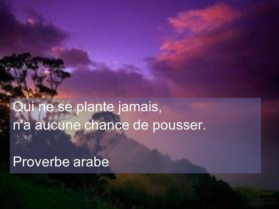 Qui ne se plante jamais, n a aucune chance de pousser. Proverbe arabe