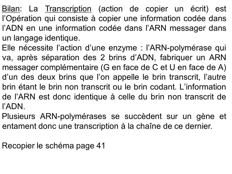 Bilan: La Transcription (action de copier un écrit) est l'Opération qui consiste à copier une information codée dans l'ADN en une information codée dans l'ARN messager dans un langage identique.