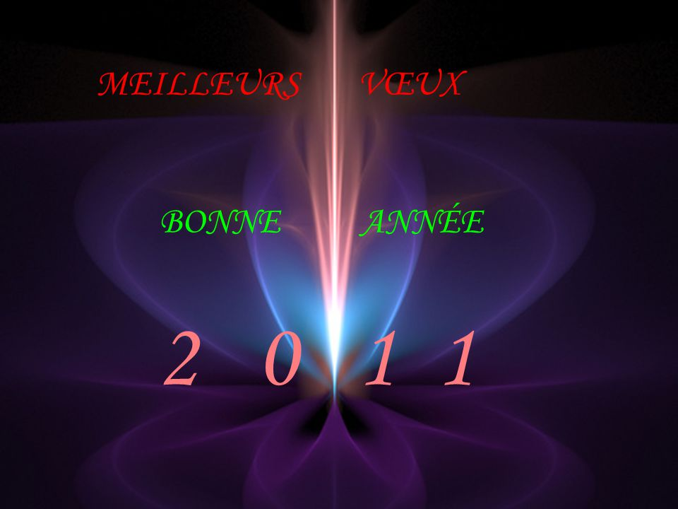 MEILLEURS VŒUX BONNE ANNÉE 2 0 1 1