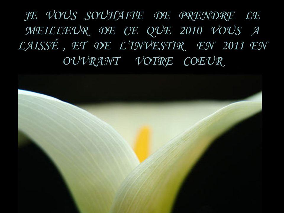 JE VOUS SOUHAITE DE PRENDRE LE MEILLEUR DE CE QUE 2010 VOUS A LAISSÉ , ET DE L'INVESTIR EN 2011 EN OUVRANT VOTRE COEUR