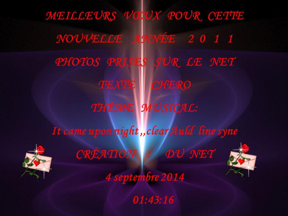 MEILLEURS VŒUX POUR CETTE NOUVELLE ANNÉE 2 0 1 1