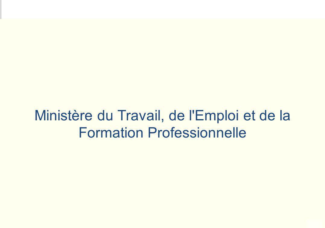 Ministère du Travail, de l Emploi et de la Formation Professionnelle