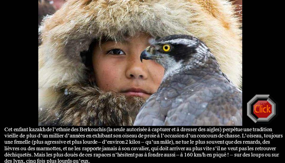 Cet enfant kazakh de l'ethnie des Berkouchis (la seule autorisée à capturer et à dresser des aigles) perpétue une tradition vieille de plus d'un millier d'années en exhibant son oiseau de proie à l'occasion d'un concours de chasse.