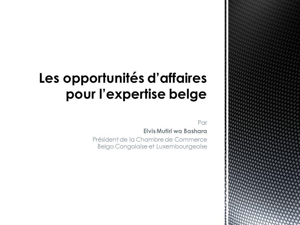 Les opportunités d'affaires pour l'expertise belge
