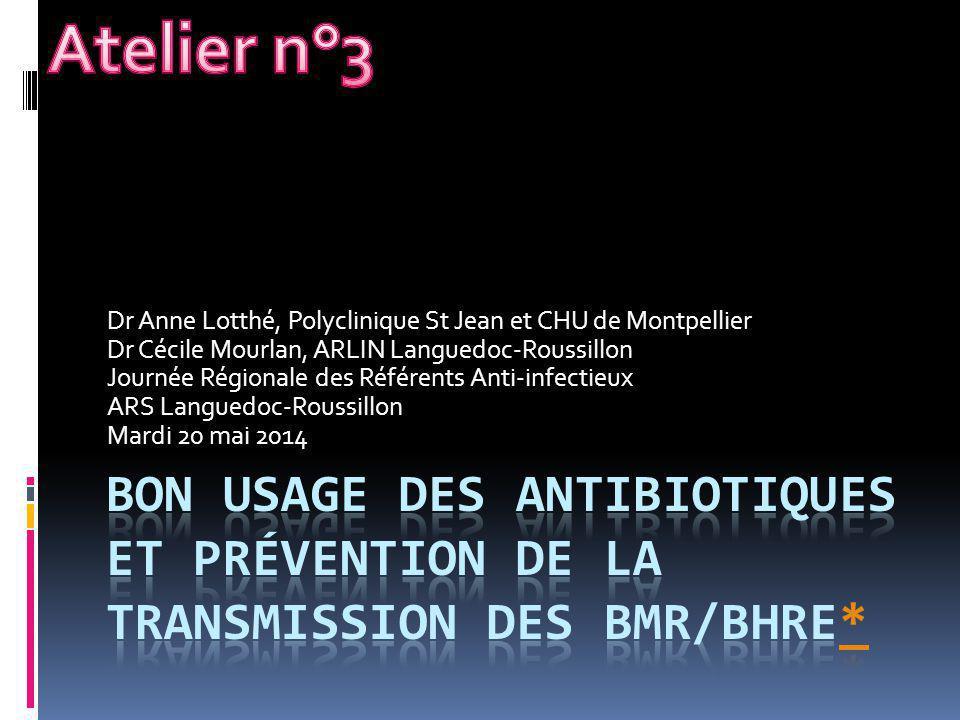 Atelier n°3 Dr Anne Lotthé, Polyclinique St Jean et CHU de Montpellier. Dr Cécile Mourlan, ARLIN Languedoc-Roussillon.