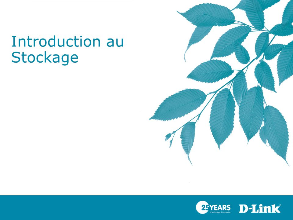 Introduction au Stockage