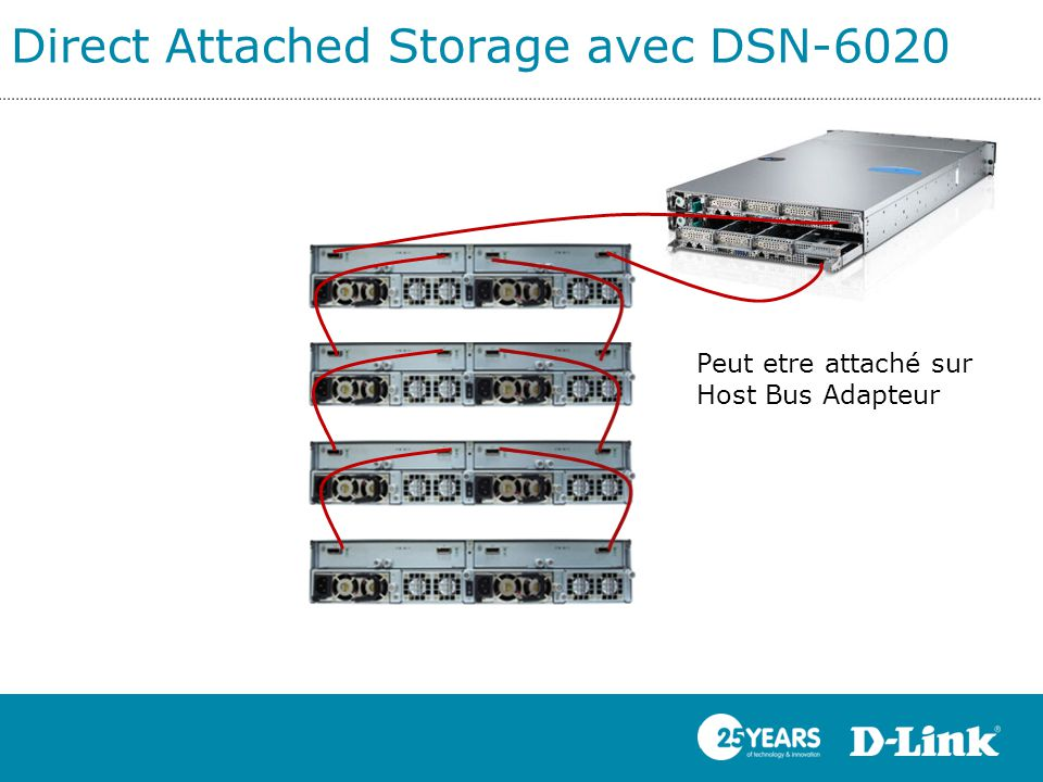 Direct Attached Storage avec DSN-6020