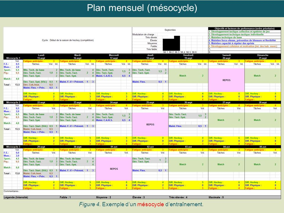 Plan mensuel (mésocycle)