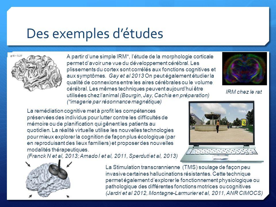 Des exemples d'études