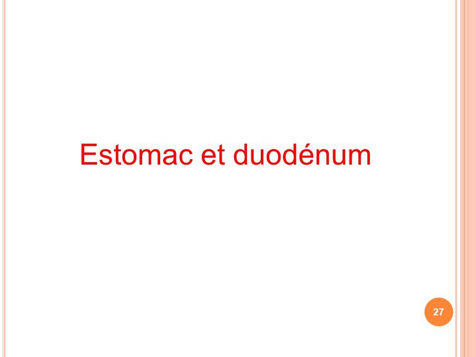 Estomac et duodénum