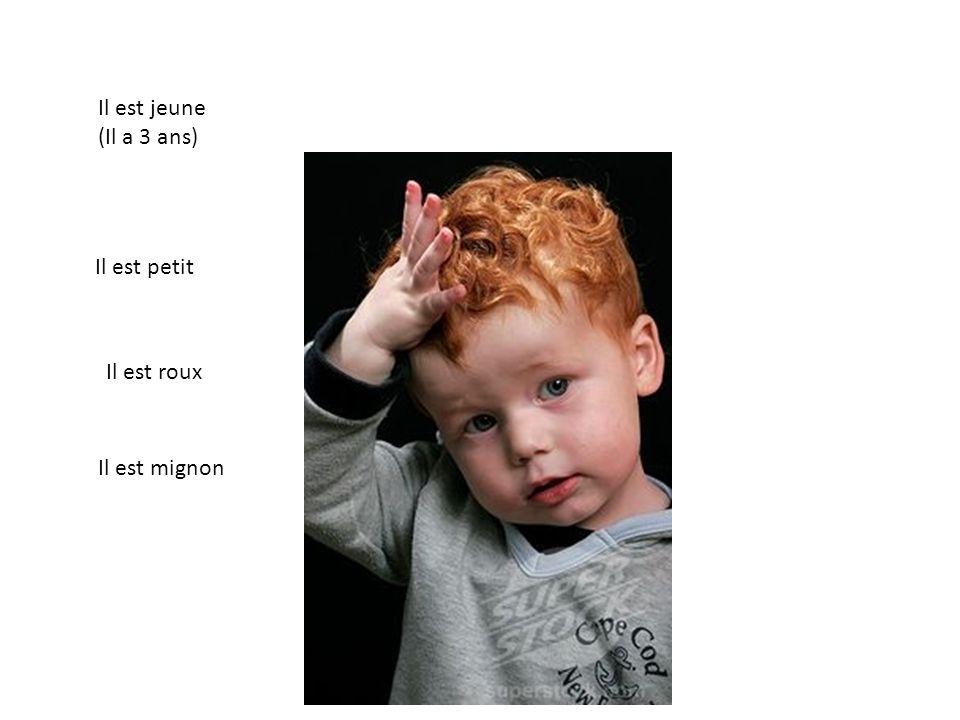 Il est jeune (Il a 3 ans) Il est petit Il est roux Il est mignon