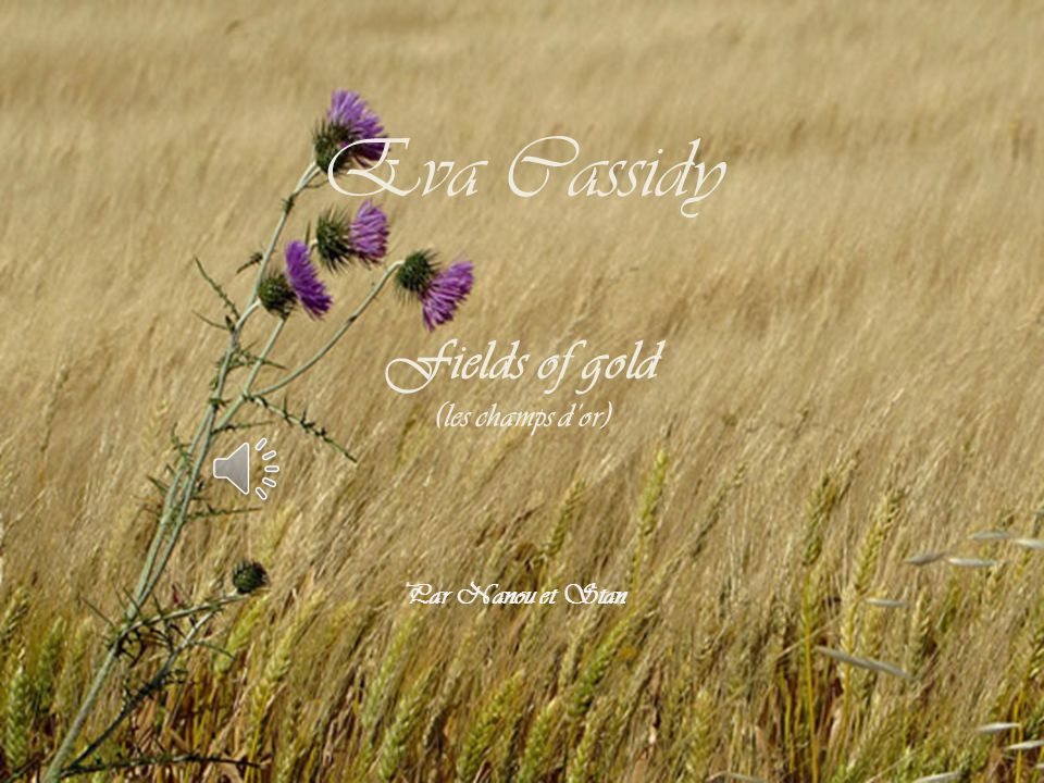 Eva Cassidy Fields of gold (les champs d'or) Par Nanou et Stan