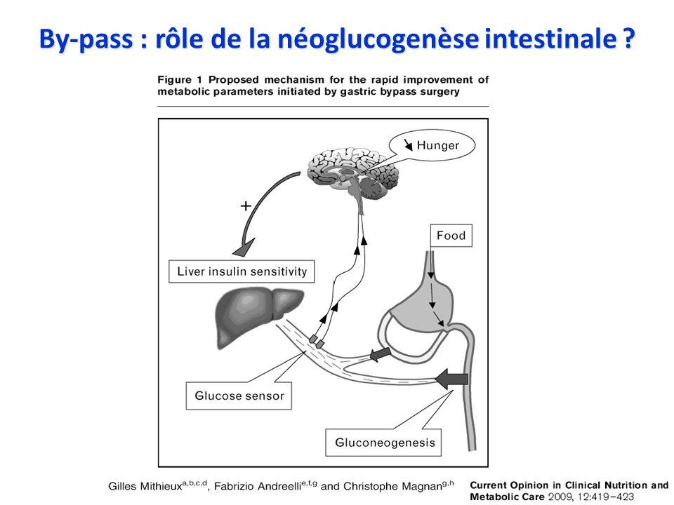 By-pass : rôle de la néoglucogenèse intestinale