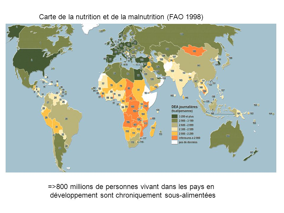 Carte de la nutrition et de la malnutrition (FAO 1998)