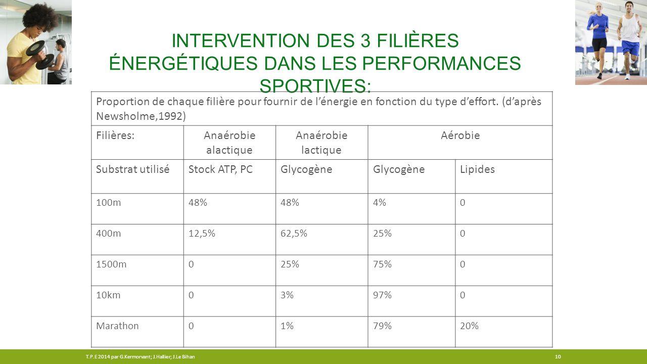 Intervention des 3 filières énergétiques dans les performances sportives: