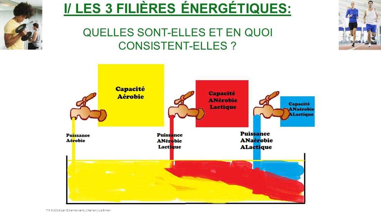 I/ Les 3 filières énergétiques: