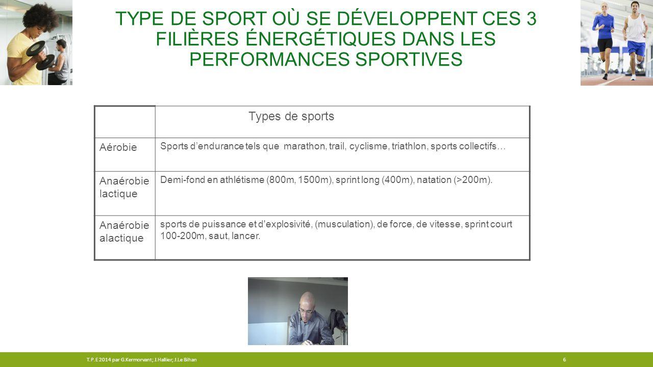 Type de sport où se développent ces 3 filières énergétiques dans les performances sportives
