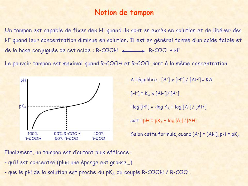 Notion de tampon
