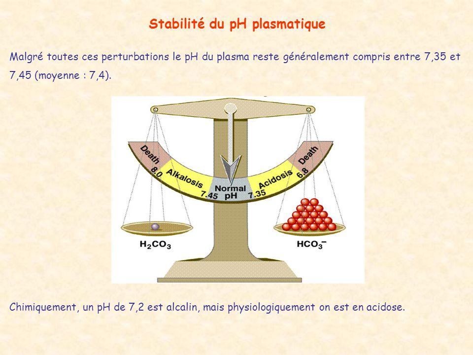 Stabilité du pH plasmatique