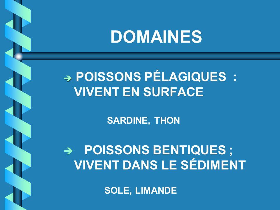 DOMAINES POISSONS BENTIQUES ; VIVENT DANS LE SÉDIMENT