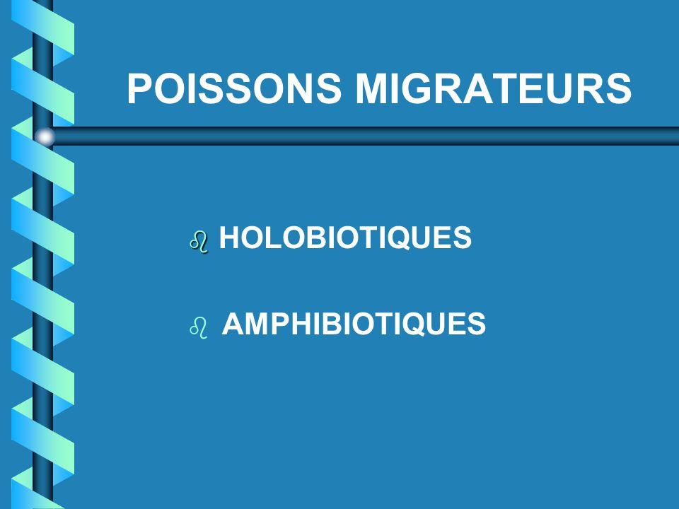 POISSONS MIGRATEURS HOLOBIOTIQUES AMPHIBIOTIQUES