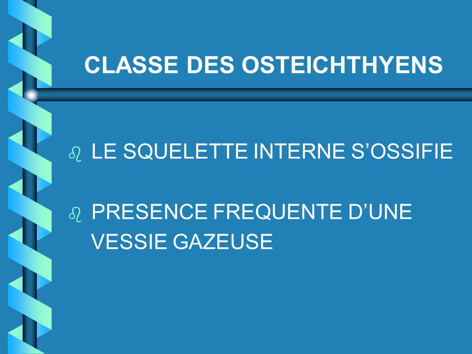 CLASSE DES OSTEICHTHYENS