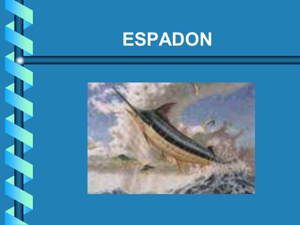 ESPADON