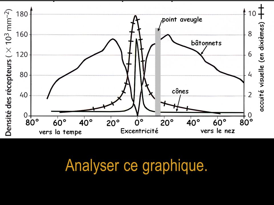 Analyser ce graphique.
