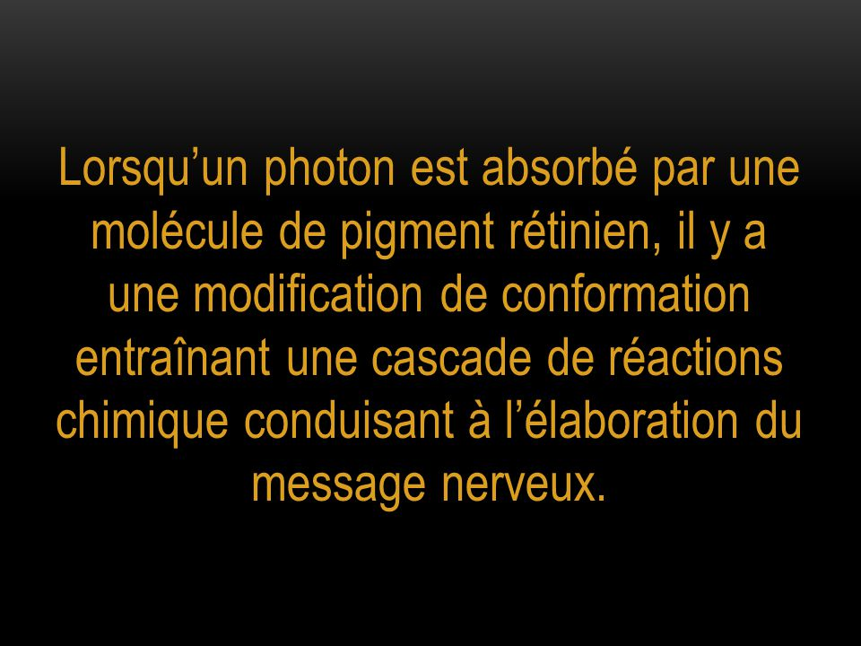 Lorsqu'un photon est absorbé par une molécule de pigment rétinien, il y a une modification de conformation entraînant une cascade de réactions chimique conduisant à l'élaboration du message nerveux.