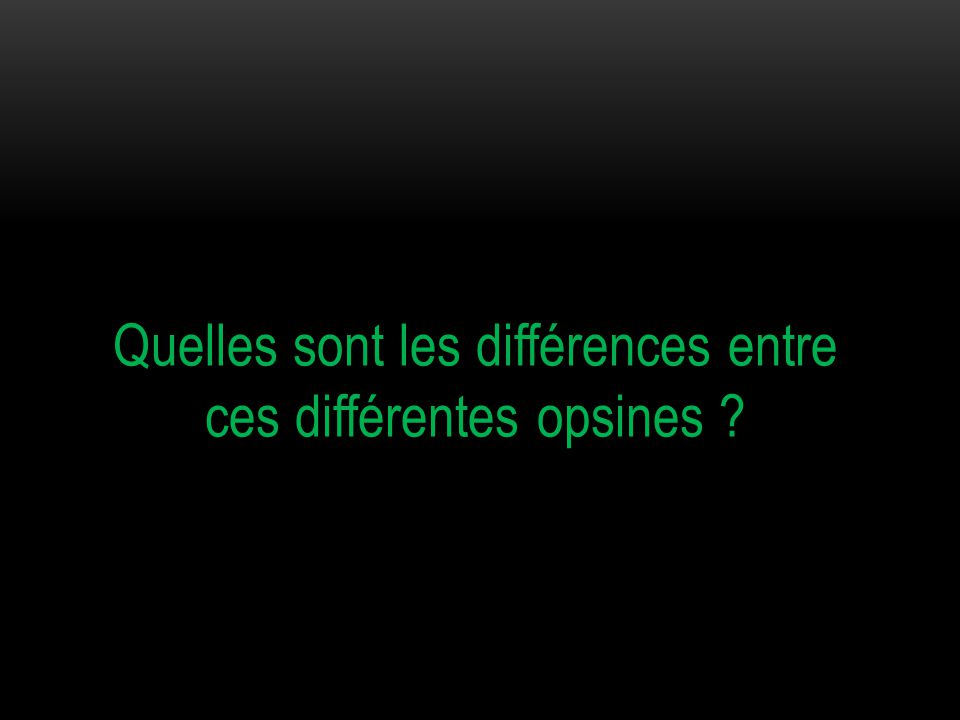 Quelles sont les différences entre ces différentes opsines