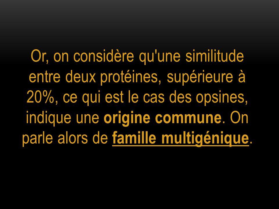 Or, on considère qu une similitude entre deux protéines, supérieure à 20%, ce qui est le cas des opsines, indique une origine commune.