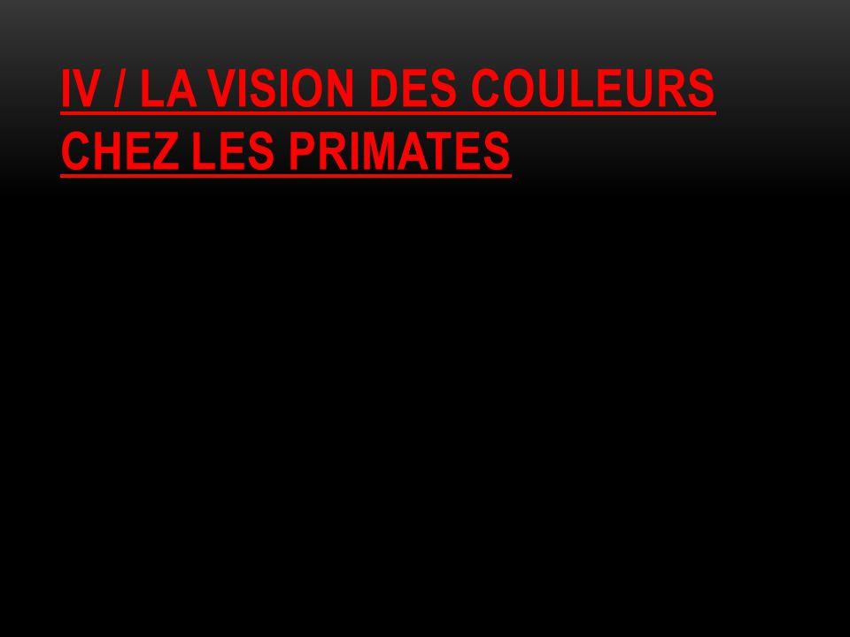 Iv / la vision des couleurs chez les primates