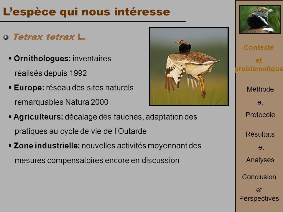 L'espèce qui nous intéresse