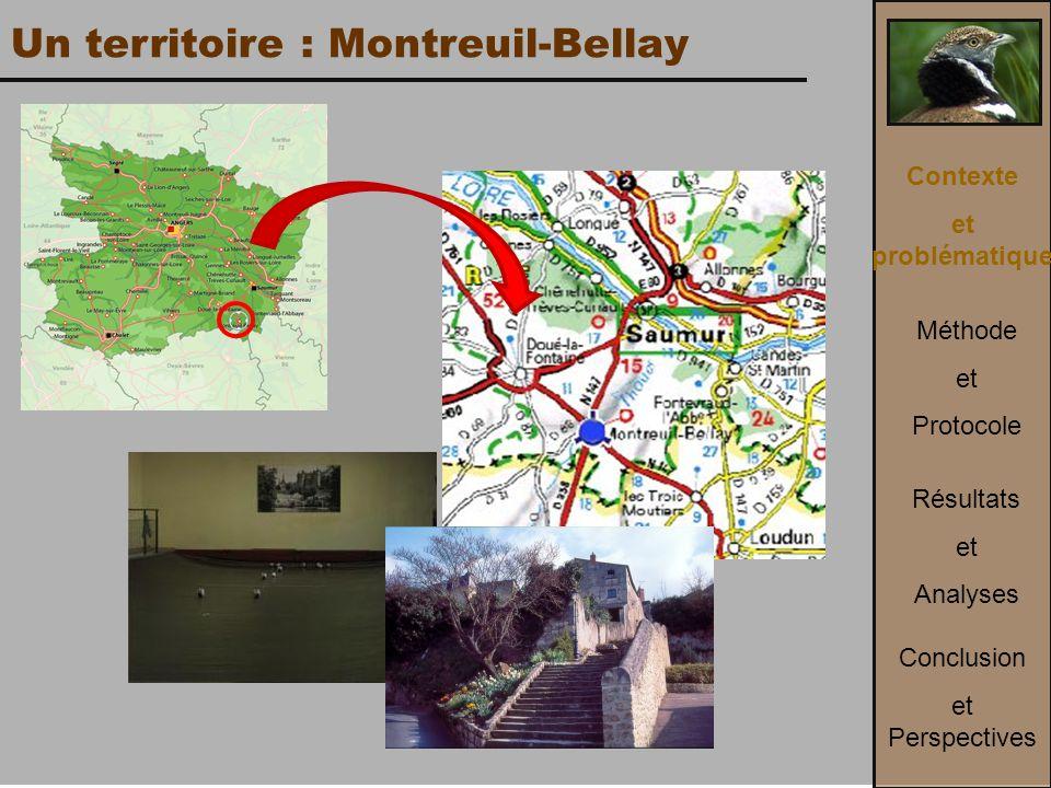 Un territoire : Montreuil-Bellay