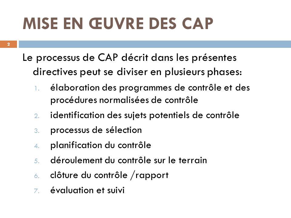 MISE EN ŒUVRE DES CAP Le processus de CAP décrit dans les présentes directives peut se diviser en plusieurs phases: