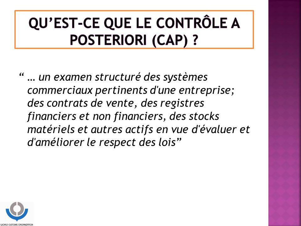 QU'EST-CE QUE LE CONTRÔLE A POSTERIORI (CAP)